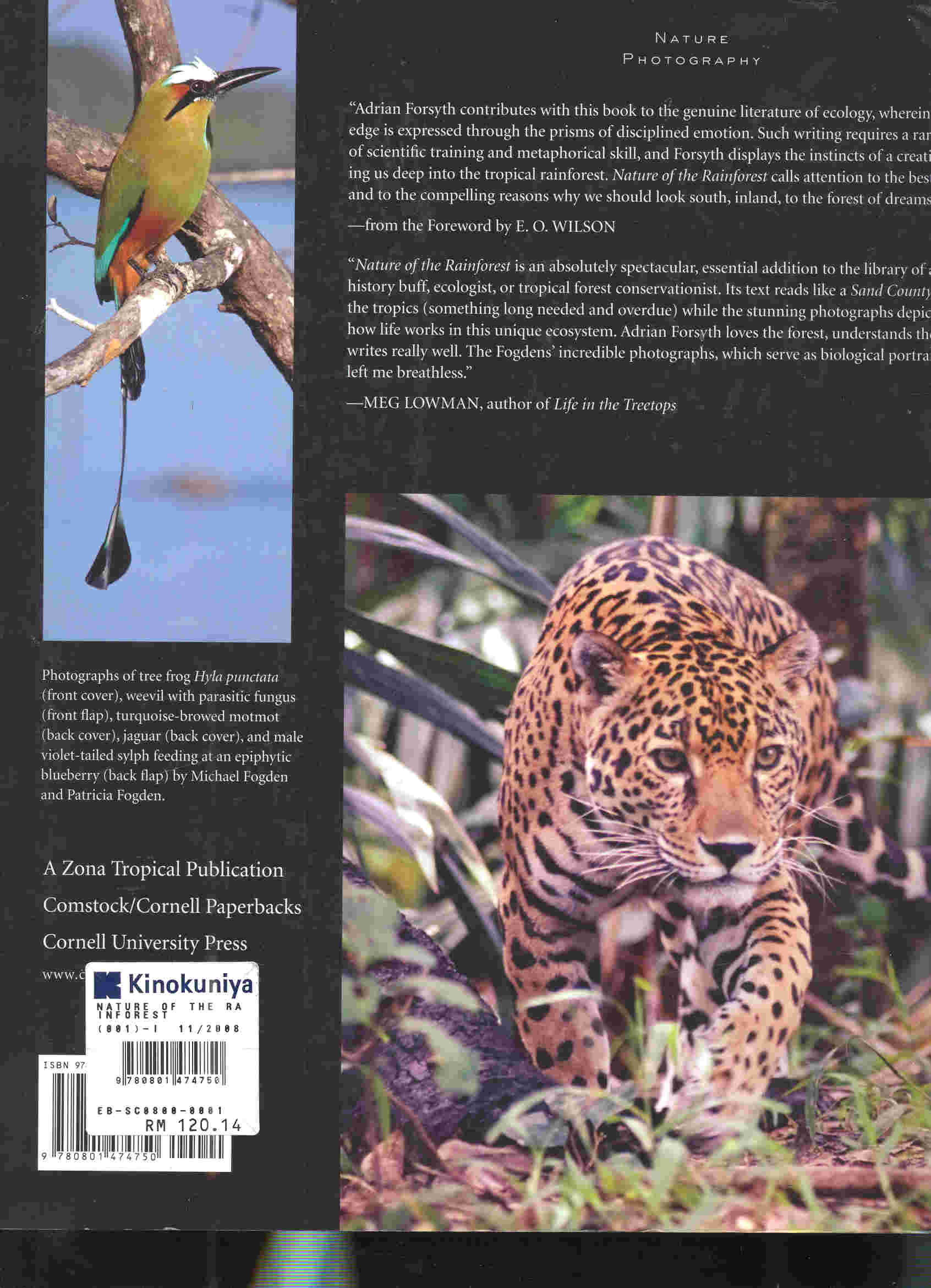 nature of the rainforest costa rica and beyond zona tropical publications